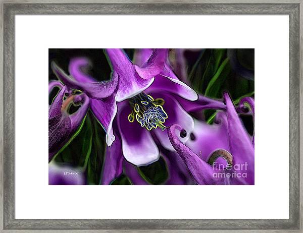 Butterfly Garden 04 - Columbine Framed Print