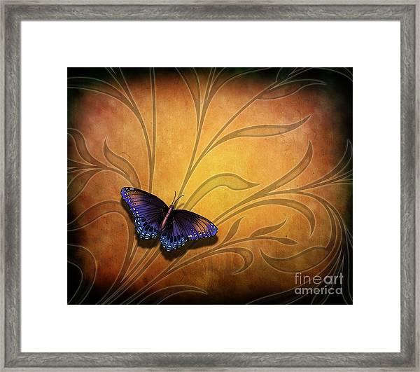 Butterfly Pause V2 Framed Print