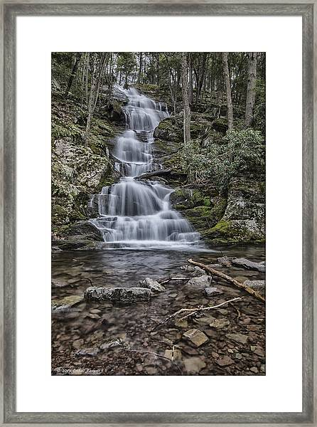 Buttermilk Framed Print