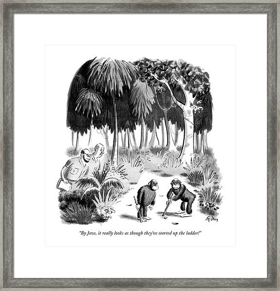 By Jove, It Really Looks As Though They've Framed Print