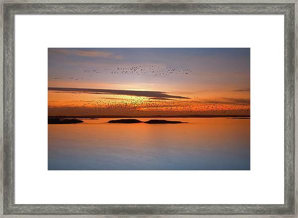 By Sunset Framed Print