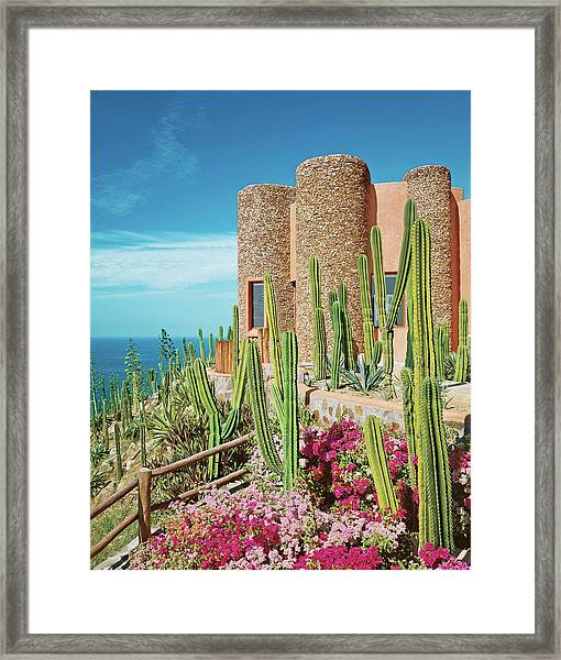 Cactus And Bougainvillea In Front Of Tower Framed Print