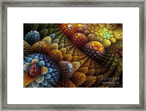 Cactus Garden Framed Print by Sandra Bauser Digital Art