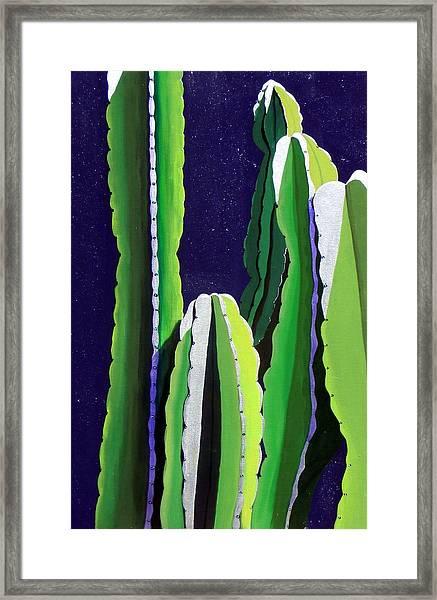 Cactus In The Desert Moonlight Framed Print