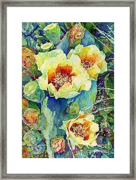 Cactus Splendor II Framed Print