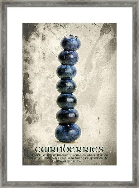 Cairnberries Framed Print