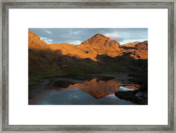 Cajas National Park (3000-4,400m Framed Print by Pete Oxford
