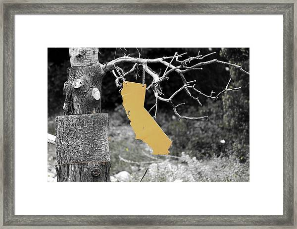 Cali's Hanging Out Framed Print by Luna Curran