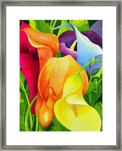 Calla Lily Rainbow Framed Print