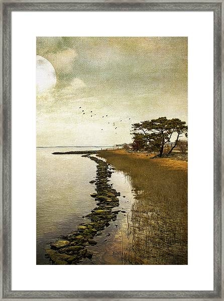 Calm At The Waters Edge Framed Print