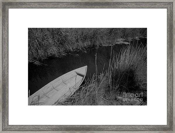 Camarque Framed Print