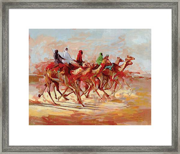 Camel Race Framed Print
