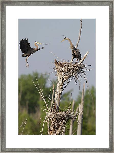 Canada, Quebec, St-thimotee Framed Print