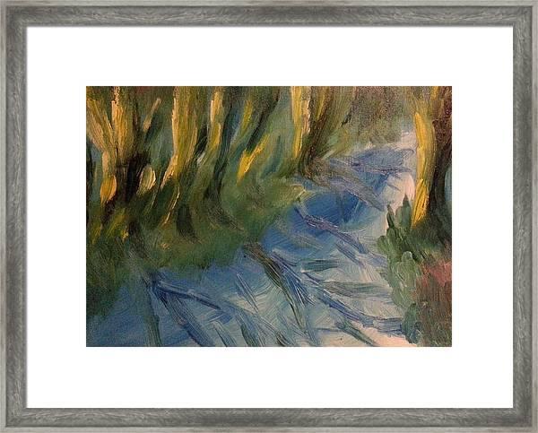 Canal In Winter Framed Print by Steve Jorde
