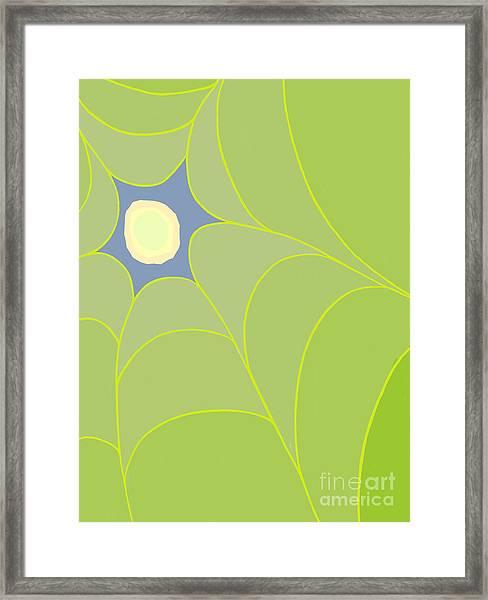 Canopy Peek Framed Print
