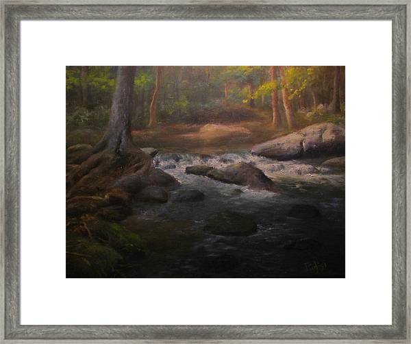 Can't Step Into The Same River Twice Framed Print