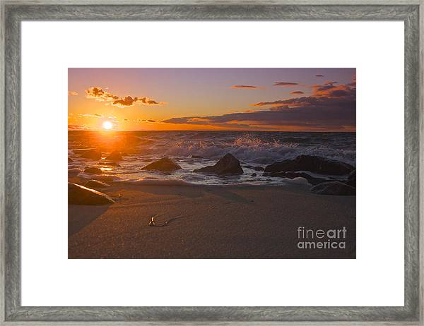 Cape Cod Beauty Framed Print