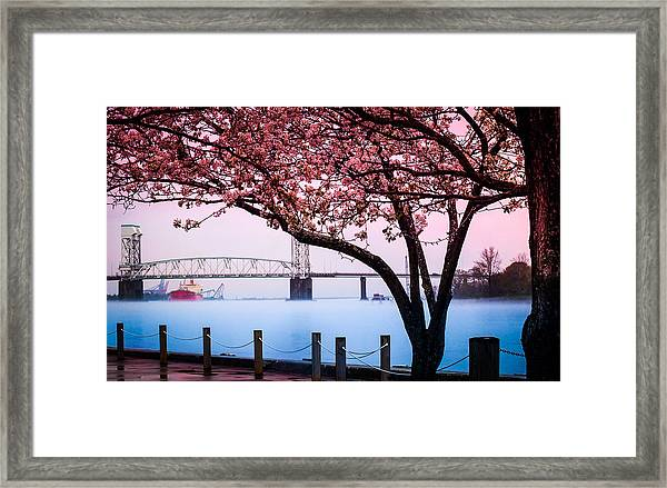 Cape Fear Of Wilmington Framed Print