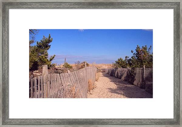 Cape Henlopen 1 Framed Print by Cynthia Harvey
