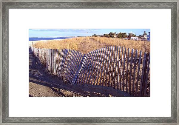 Cape Henlopen 14 Framed Print by Cynthia Harvey