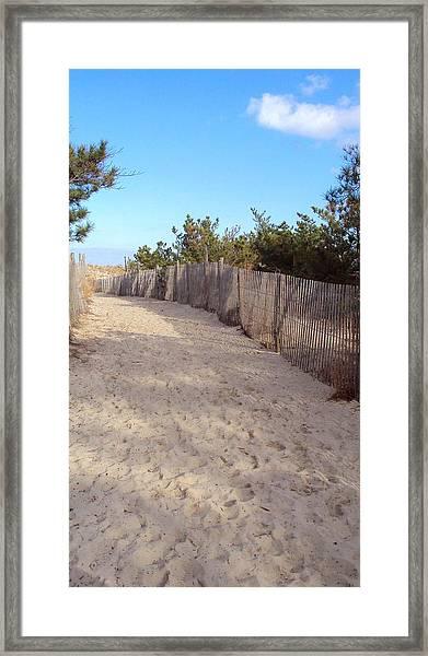 Cape Henlopen 5 Framed Print by Cynthia Harvey