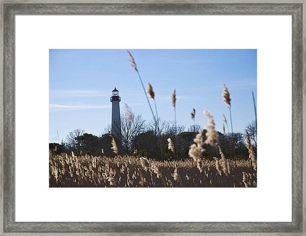 Cape May Light Framed Print