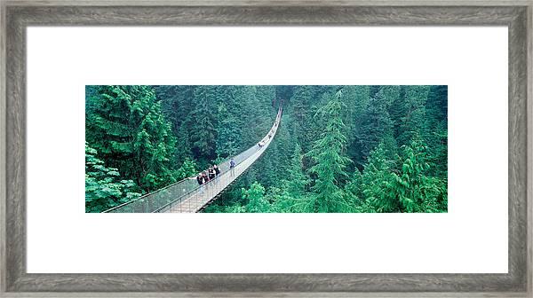 Capilano Bridge, Suspended Walk Framed Print