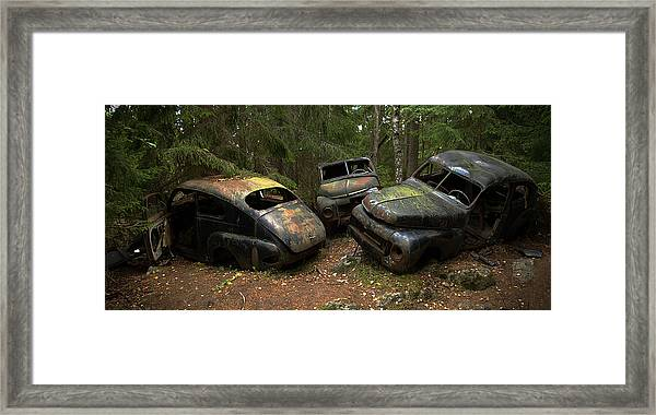 Car Cemetery In The Woods. Framed Print