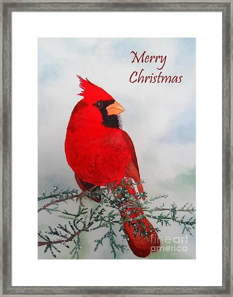 Cardinal Merry Christmas Framed Print