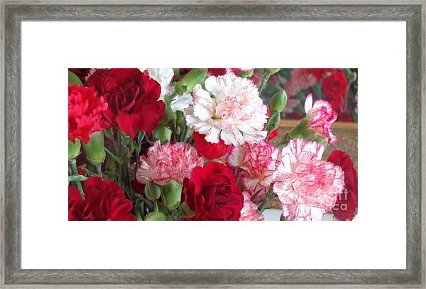 Carnation Cluster Framed Print