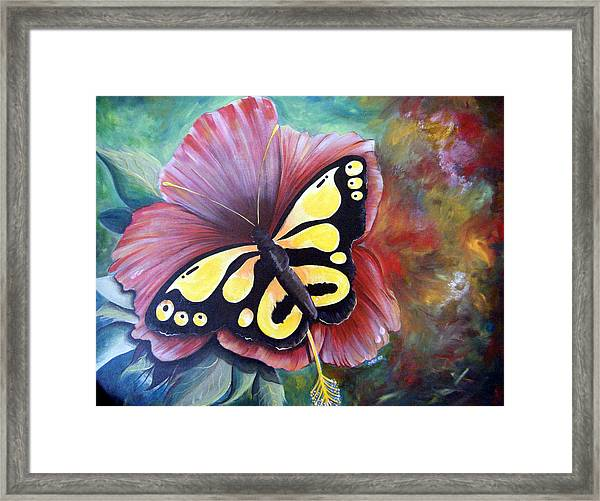 Carnival Butterfly Framed Print
