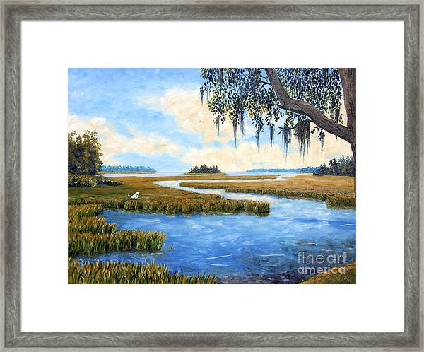 Carolina Colors Framed Print