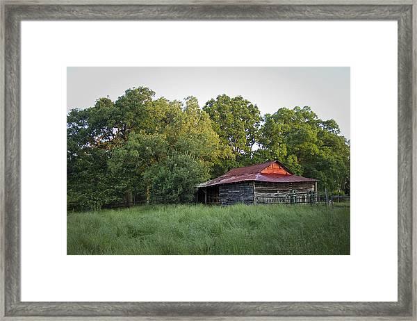 Carolina Horse Barn Framed Print