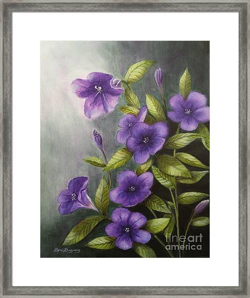Carolina Wild Petunia Ruellia Caroliniensis Framed Print
