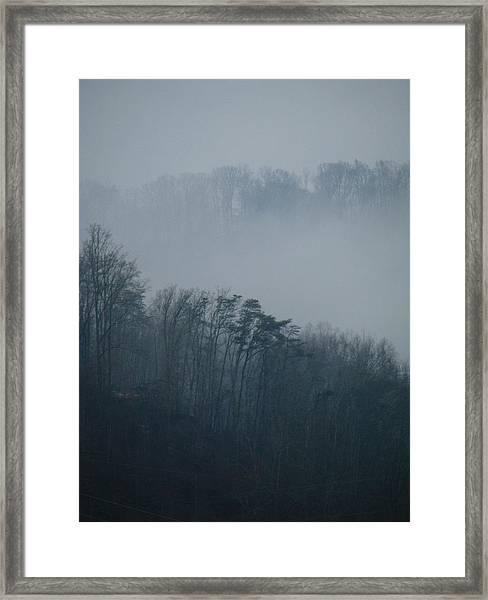 Carolina Winter #1 Framed Print