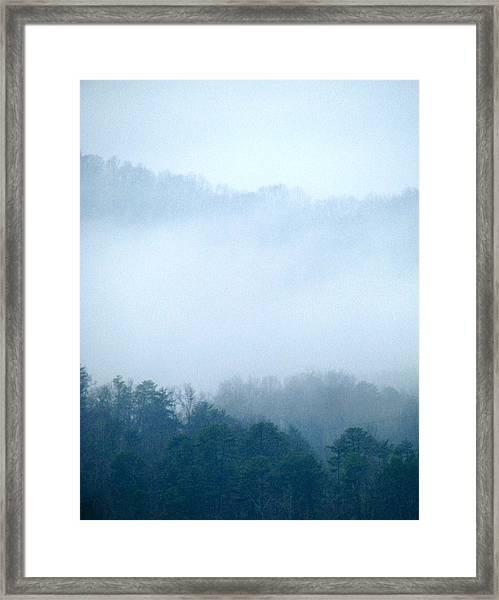 Carolina Winter Number Two Framed Print