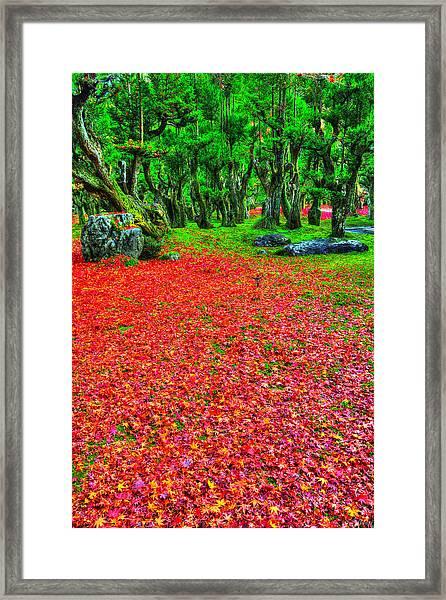 Carpet Of Love Framed Print