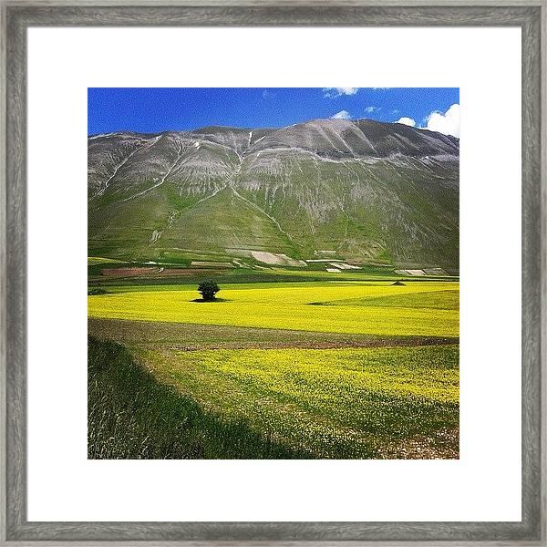 Castelluccio   Fiorita Framed Print
