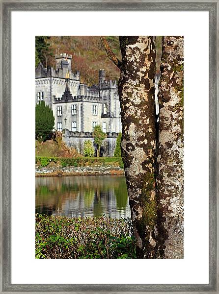 Castle Behind The Trees Framed Print