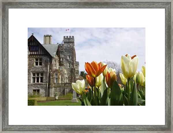 Castle Tulips Framed Print