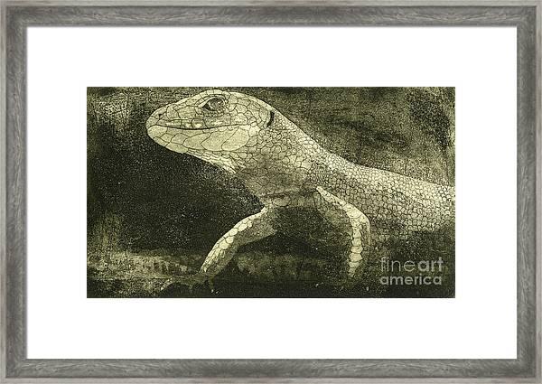 casual meeting Reptile Viviparous Lizard  Lacerta vivipara Framed Print