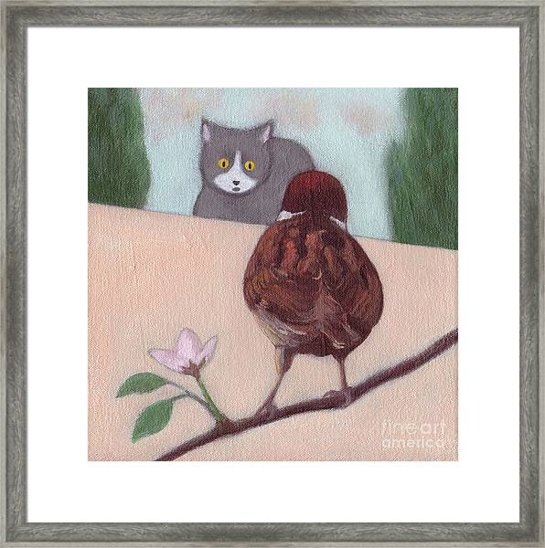 Cat And Sparrow  Framed Print