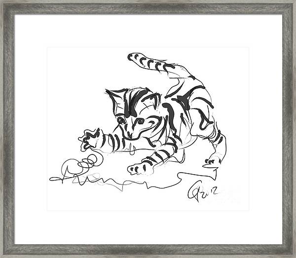 Cat- Cute Kitty  Framed Print