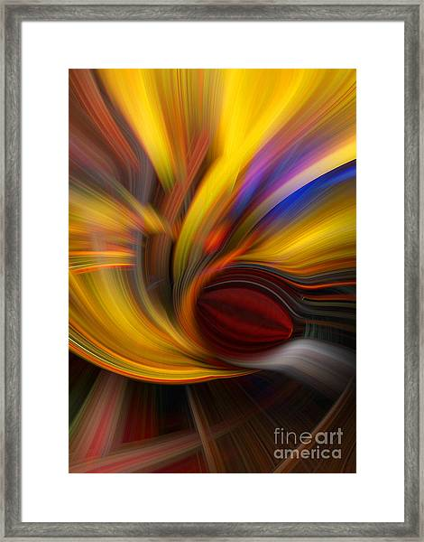Cat Eye Abstract Framed Print