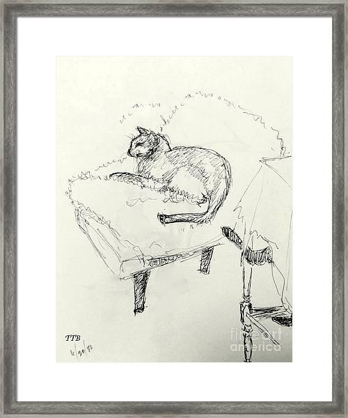 Cat Heaven Framed Print