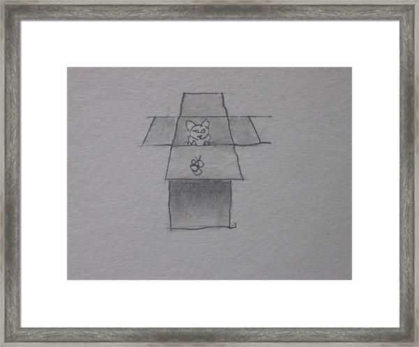 Cat In A Box Framed Print