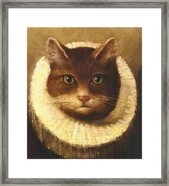 Cat In A Ruff Framed Print