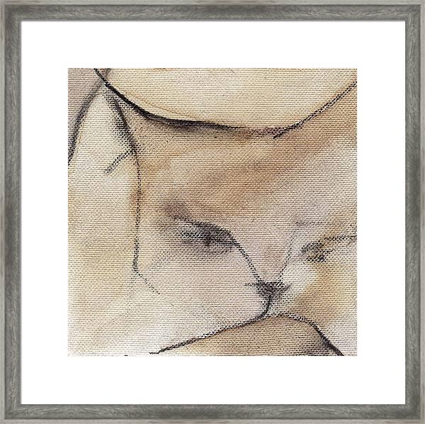 Cat In Wine 3 Framed Print