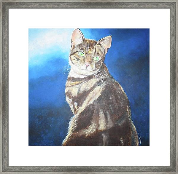 Cat Profile Framed Print
