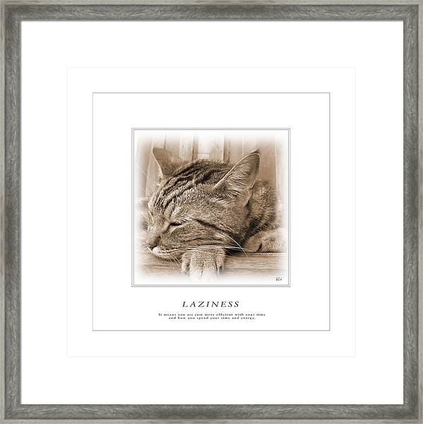 Cat Reflections 2 Framed Print